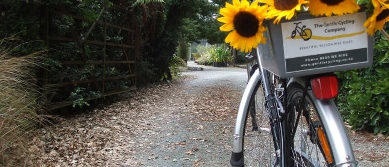 Gentle Cycle Brightwater Vineyard Ride