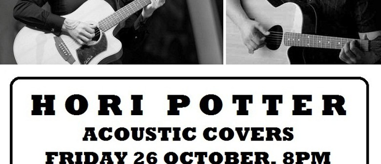 Hori Potter Acoustic Duo