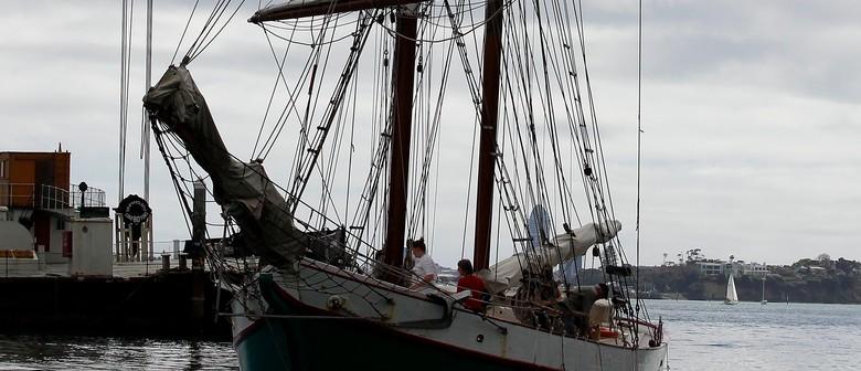 Breeze Sailing at Tall Ships Regatta