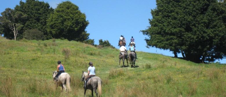 Maungaturoto Primary School Horse Trek