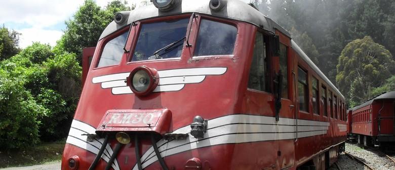 Wellington Anniversary Weekend Heritage Train Rides