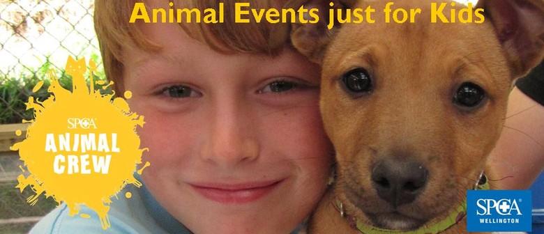 Wellington SPCA Animal Crew