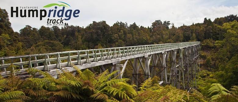 Viaduct Walk and Talk - Tuatapere - Eventfinda