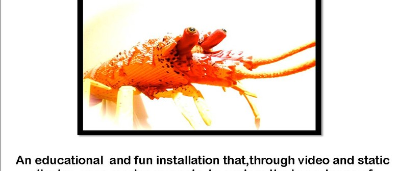 Conversation with a Crayfish