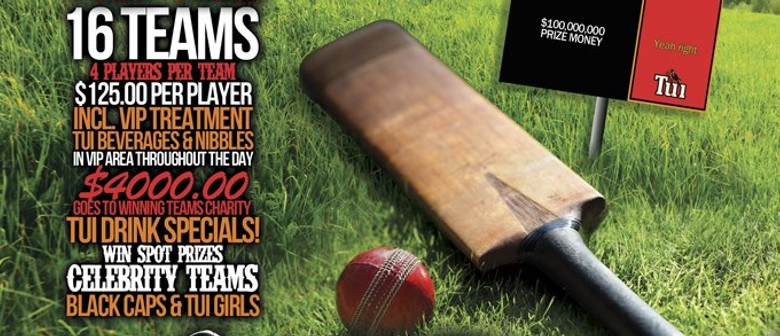 Backyard Cricket Competition - Charity Day