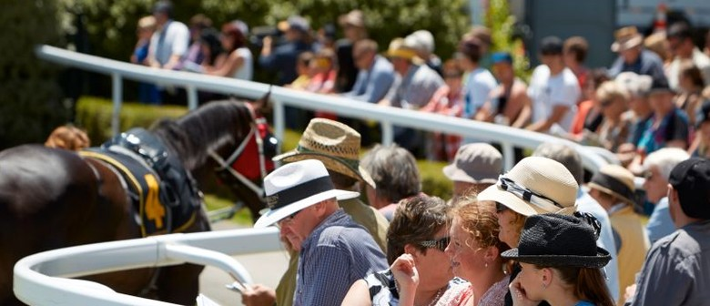 Interislander Summer Festival New Year's Day Races