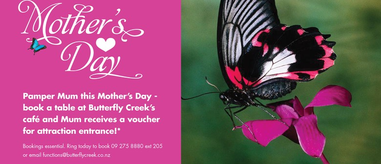 Mothers Day at Butterfly Creek