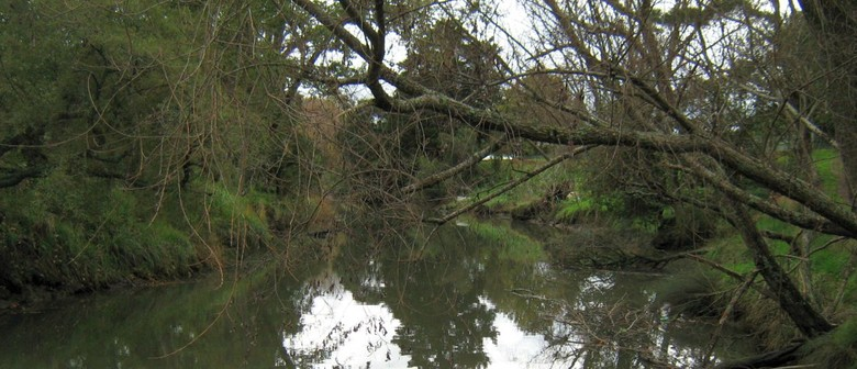 Henderson Creek Walk