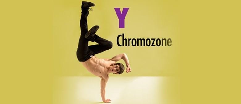 Y Chromozone - Tempo Dance Festival 2013
