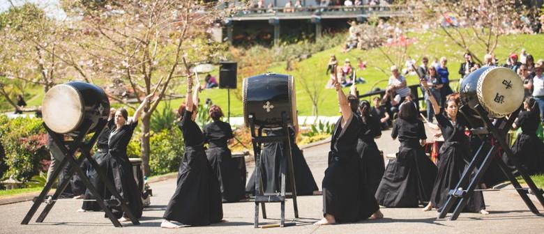 Zen Garden Cherry Blossom Festival 2013