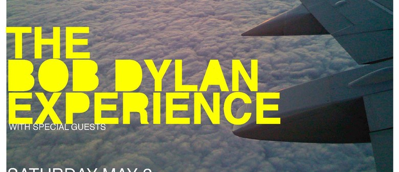 The Bob Dylan Experience