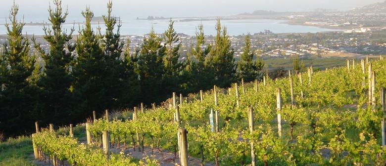 Wine Evening With Multi Award-winning Waimea Estates