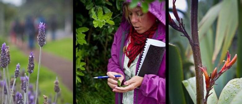 Gardens for Foodies Tour on Waiheke Island