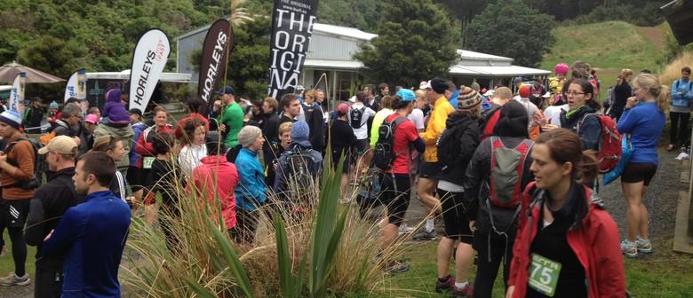 XTERRA Trail Run/Walk 2014 - Event 4