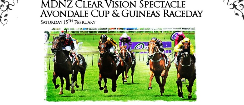 MDNZ Clear Vision Spectacle Avondale Cup & Guineas Raceday