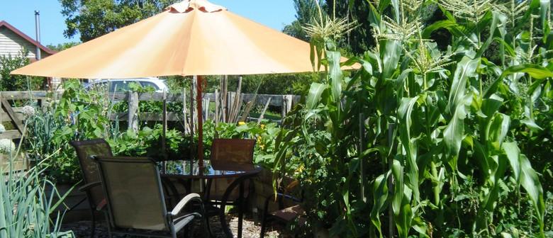 Edible Inspirations: Productive Gardening