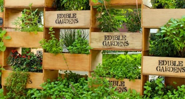 NZ Edible Garden Show Hastings Eventfinda