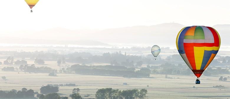 Balloon Rides - Wairarapa Balloon Fiesta 2014