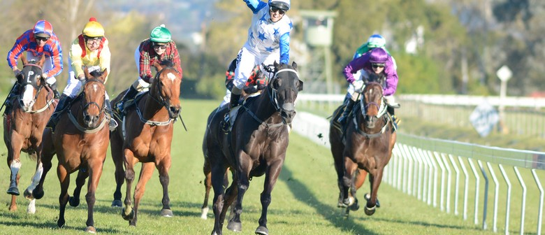 Hawke's Bay Golden Slipper
