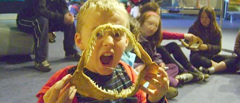 Aquarium School Holiday Programme