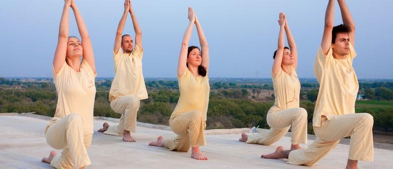 8 Week Beginners Yoga Course