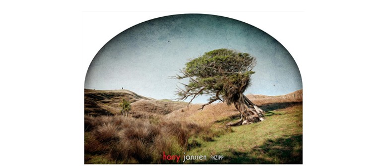 CPF New Zealand Landscapes Photography Exhibition