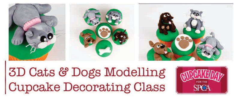 SPCA 3D Cats & Dogs Figure Modelling Cake Decorating Class