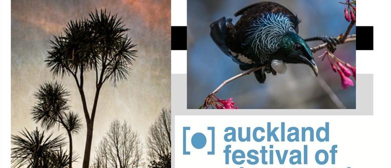 Photographic Exhibition - Life and Light of Maungakiekie