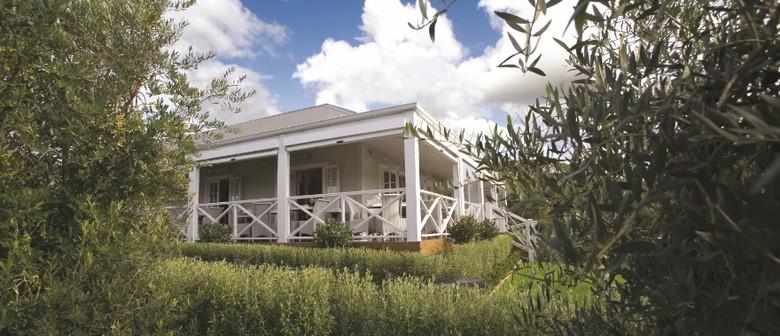 'Wine & Dine Tour' with Bracu and Villa Maria Estate
