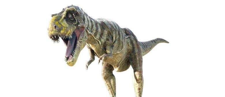 Tyrannosaurs: January Sleepover