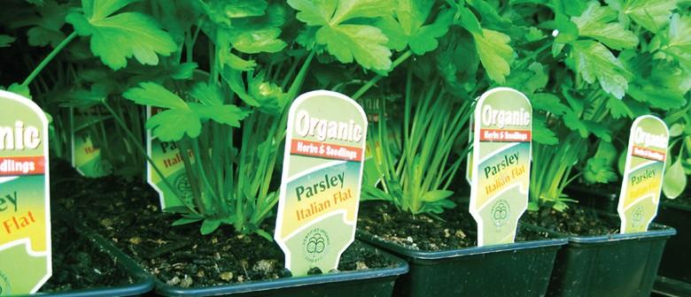Spring Planting Talk