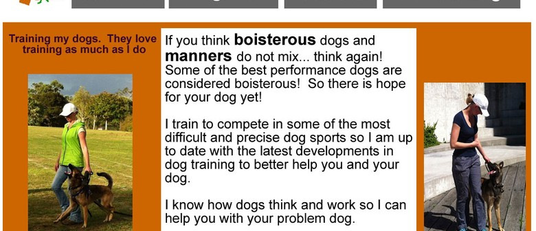 Dog Training Classes Solution K9 Obedience 101