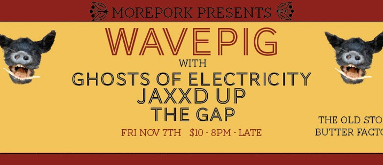 Wavepig, Ghosts of Electricity, Jaxxd Up and The Gap