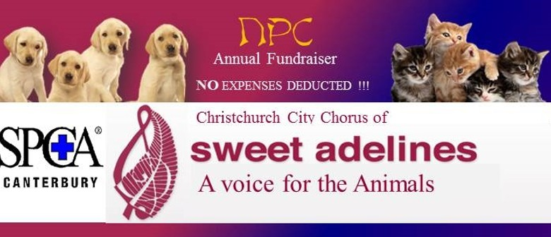NPC Annual  Fund Raiser - Sweet Adelines
