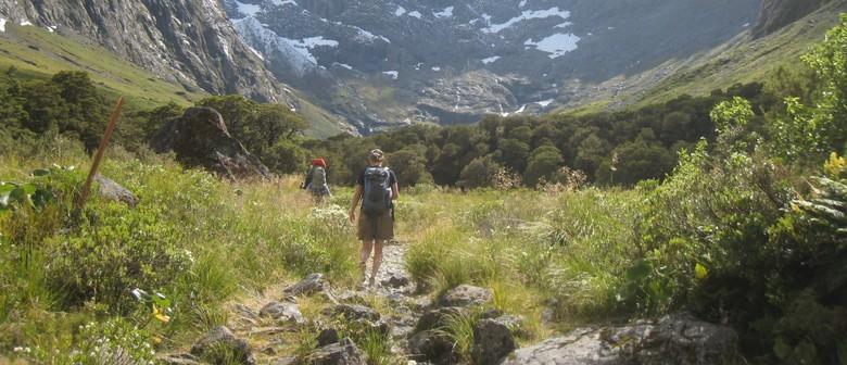 The Alpine World