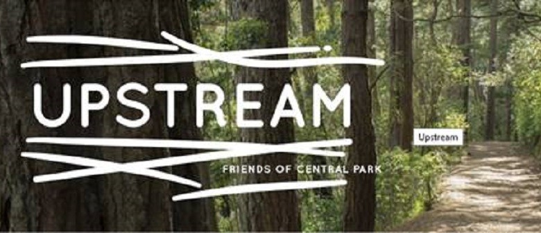 Upstream: the Art Trail - Parks Week