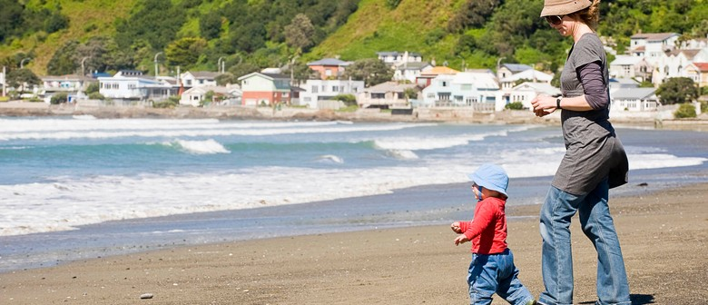 Lyall Bay Beach Cleanup - Parks Week