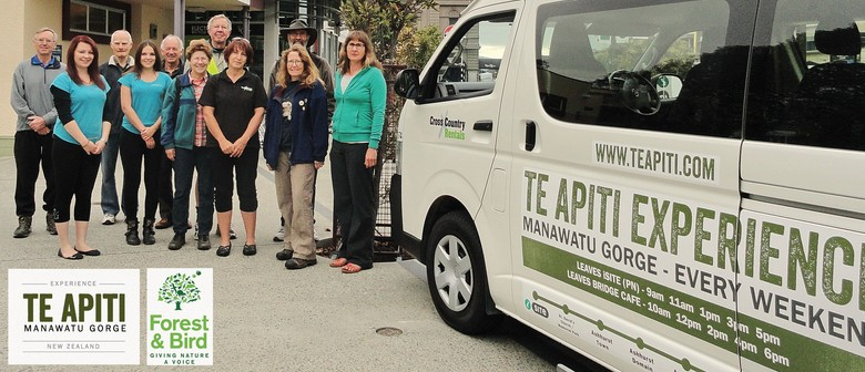 Hosted Walks through Te Apiti-Manawatu Gorge