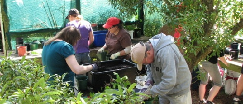 Growing Natives with Success — Parks Week