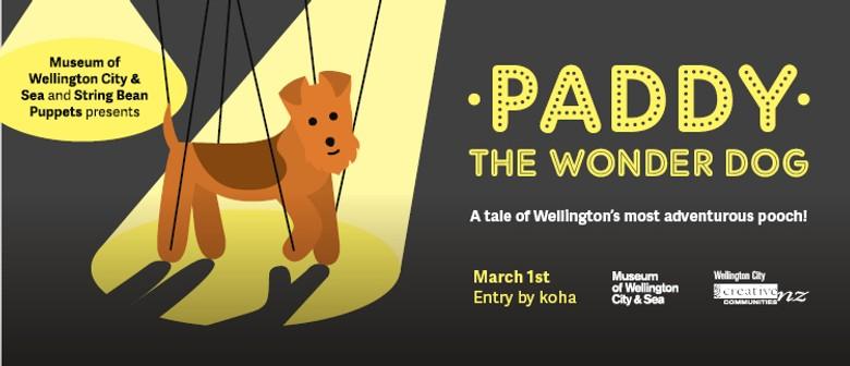 Paddy The Wonder Dog