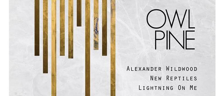 Alexander Wildwood, New Reptiles, Lightning On Me
