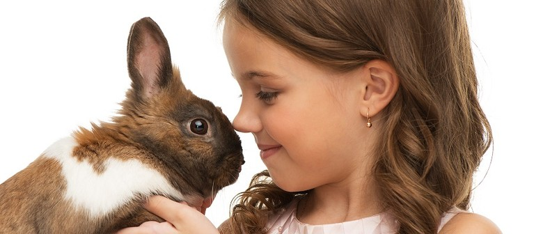 Learn all about Easter Animals