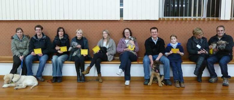 Indoor Dog Training Course