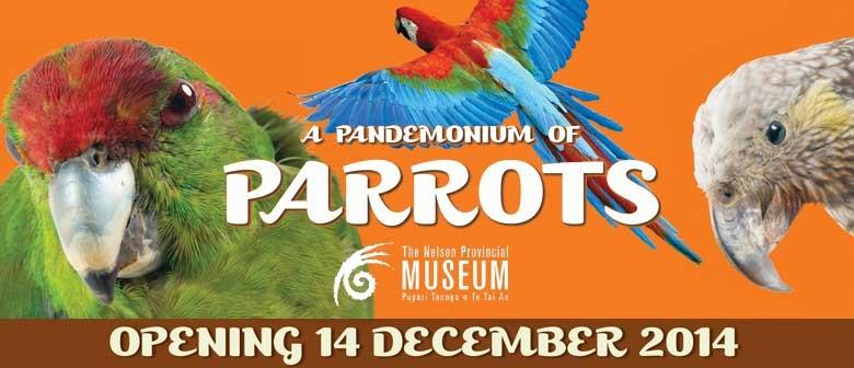 A Pandemonium of Parrots