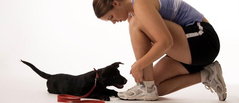 Dog Friendly Team Fitness Training