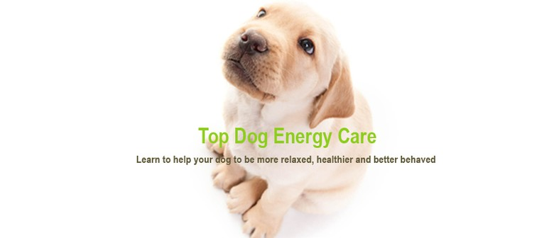 Top Dog Energy Care