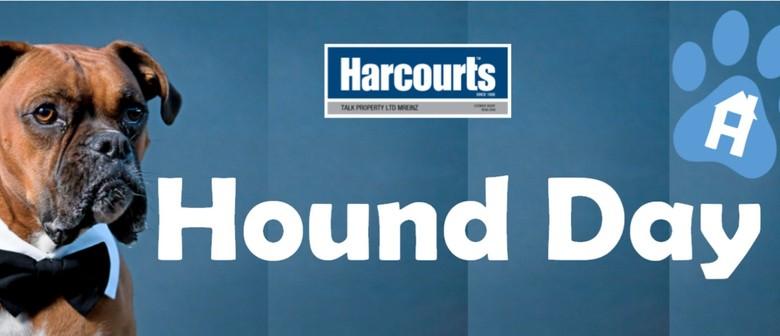 Harcourts Hound Day