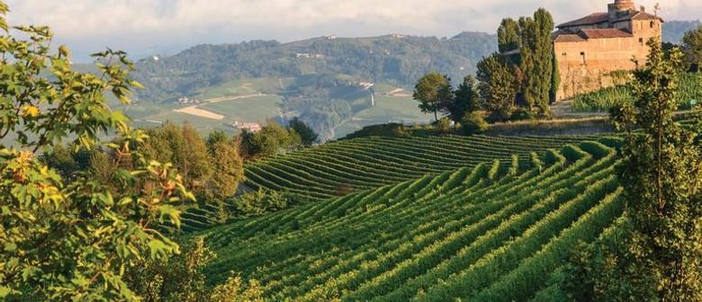 Friday Wine Tasting - Northern Italy