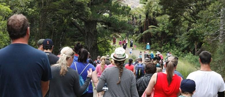 Glenbervie School Fun Run & Walk