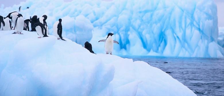 Explorers Antarctic Adventure